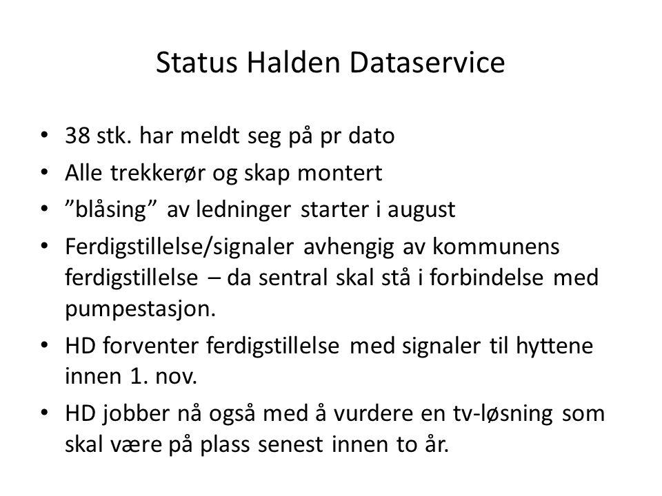 """Status Halden Dataservice • 38 stk. har meldt seg på pr dato • Alle trekkerør og skap montert • """"blåsing"""" av ledninger starter i august • Ferdigstille"""
