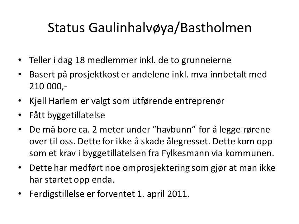 Status Gaulinhalvøya/Bastholmen • Teller i dag 18 medlemmer inkl. de to grunneierne • Basert på prosjektkost er andelene inkl. mva innbetalt med 210 0