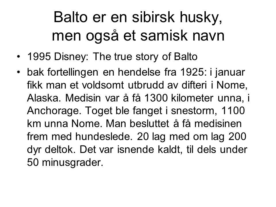 Balto er en sibirsk husky, men også et samisk navn •1995 Disney: The true story of Balto •bak fortellingen en hendelse fra 1925: i januar fikk man et