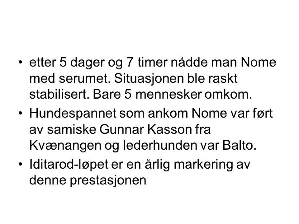 •etter 5 dager og 7 timer nådde man Nome med serumet. Situasjonen ble raskt stabilisert. Bare 5 mennesker omkom. •Hundespannet som ankom Nome var ført