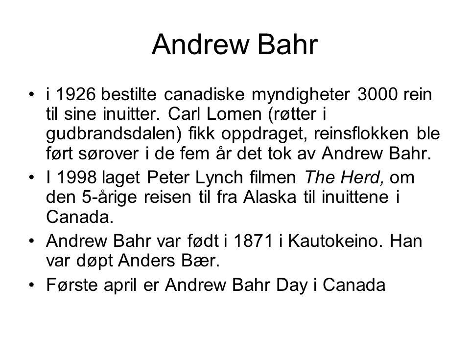 Andrew Bahr •i 1926 bestilte canadiske myndigheter 3000 rein til sine inuitter. Carl Lomen (røtter i gudbrandsdalen) fikk oppdraget, reinsflokken ble