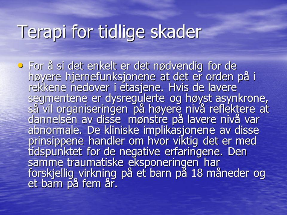 Terapi for tidlige skader • For å si det enkelt er det nødvendig for de høyere hjernefunksjonene at det er orden på i rekkene nedover i etasjene. Hvis