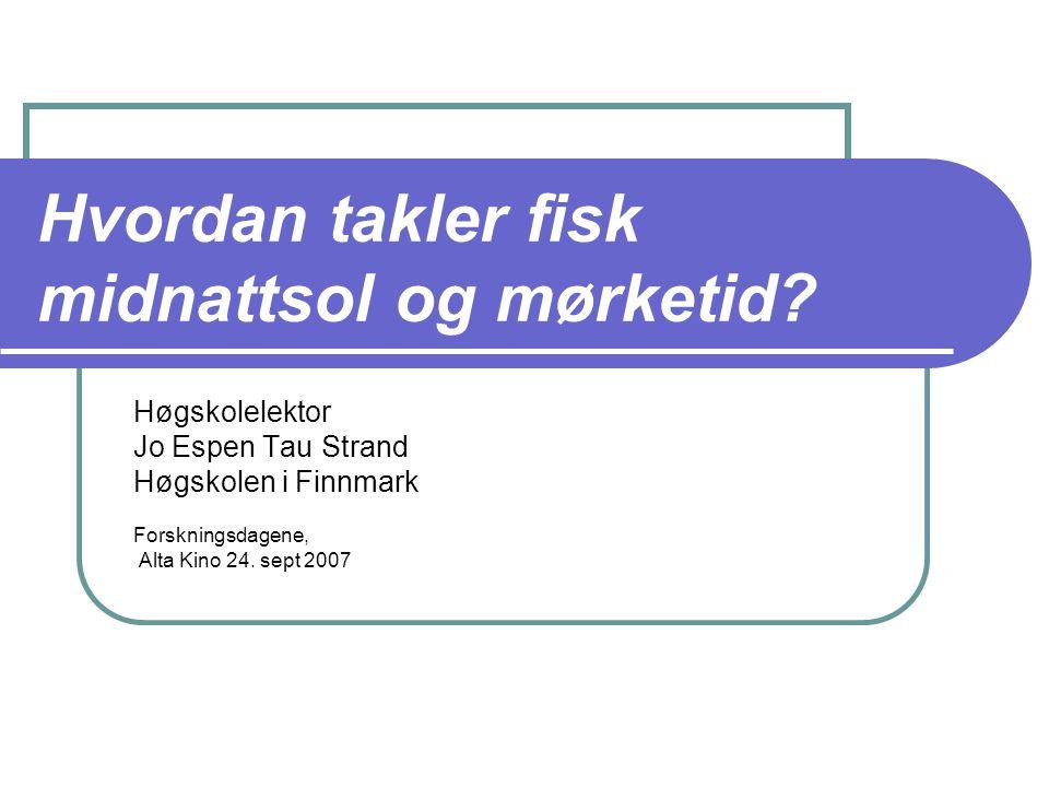 Min fou virksomhet:  Sesongrytmer hos fisk  Røye  Settefiskanlegget i Talvik  Mål om at det skal resultere i en dr.grad i løpet av de kommende årene  Betydning