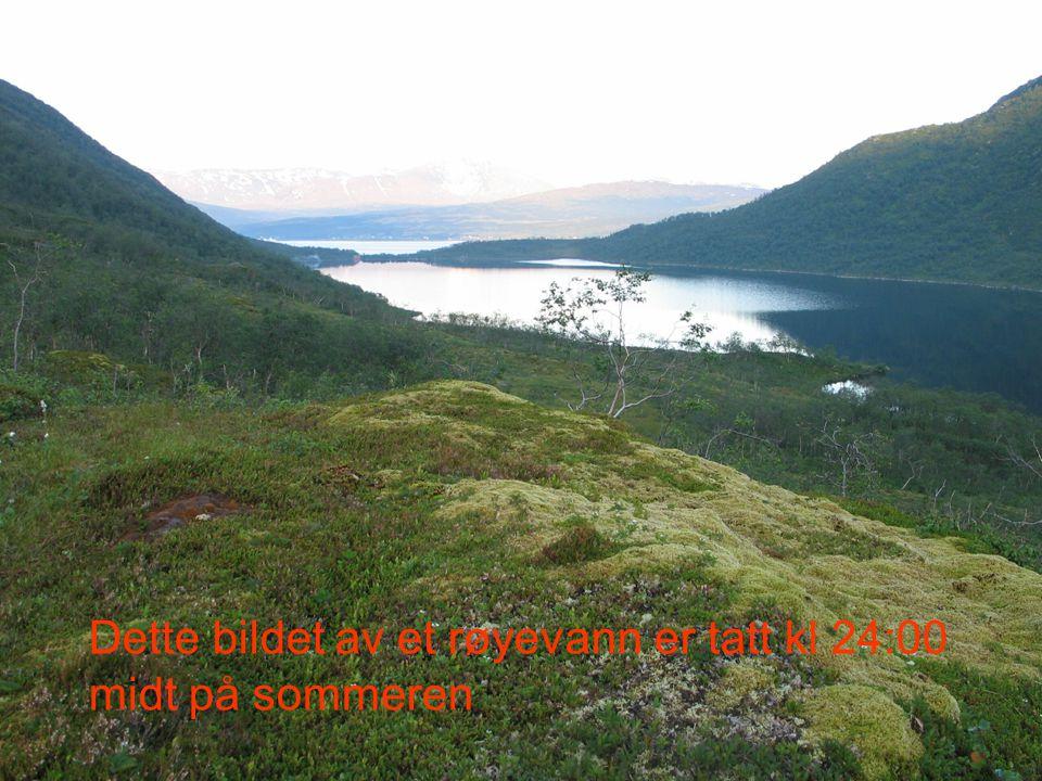 Dette bildet av et røyevann er tatt kl 24:00 midt på sommeren