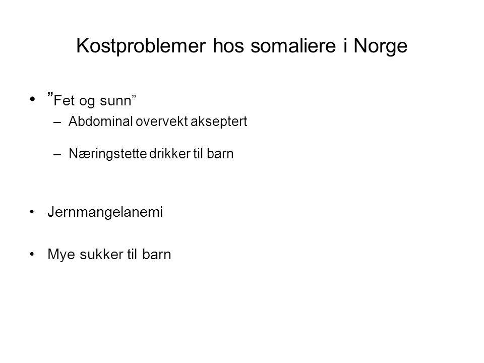 """Kostproblemer hos somaliere i Norge •"""" Fet og sunn"""" –Abdominal overvekt akseptert –Næringstette drikker til barn •Jernmangelanemi •Mye sukker til barn"""