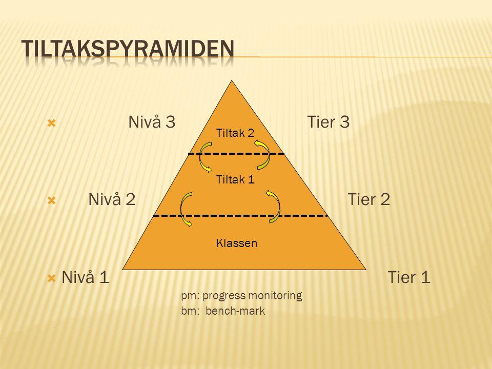  Nivå 3 Tier 3  Nivå 2 Tier 2  Nivå 1 Tier 1 pm: progress monitoring bm: bench-mark Klassen Tiltak 1 Tiltak 2