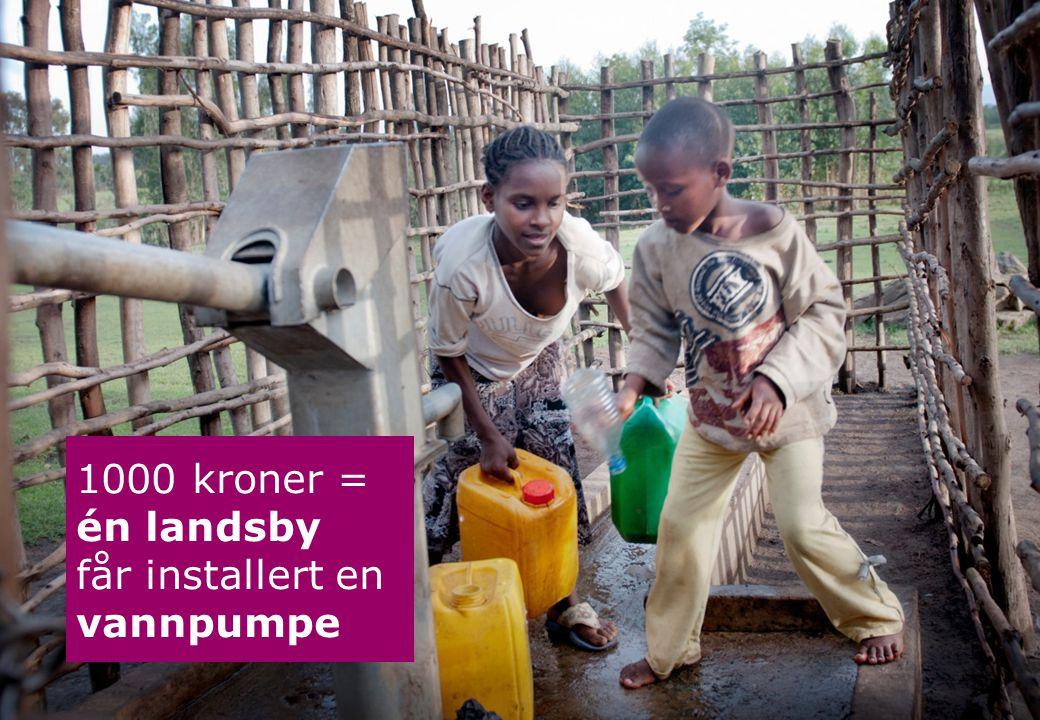 1000 kroner = én landsby får installert en vannpumpe