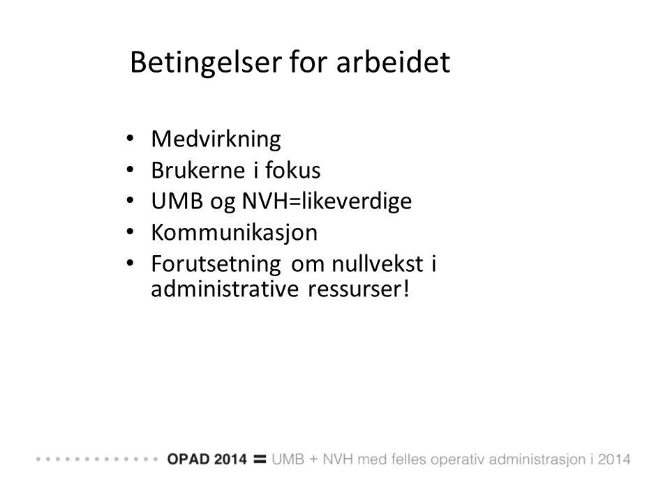 O 4.1 Konkretisering av modell inkl stillingsbeskrivelse for sentrale lederstillinger og funksjonsbeskrivelser sentrale organ og org.