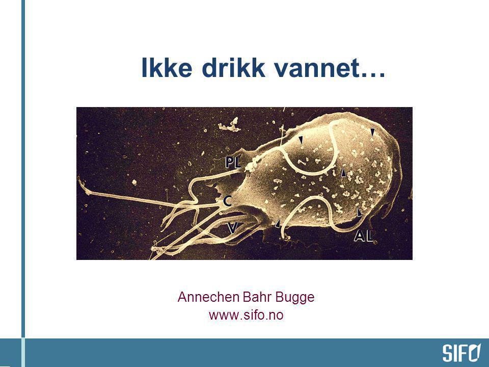 Ikke drikk vannet… Annechen Bahr Bugge www.sifo.no