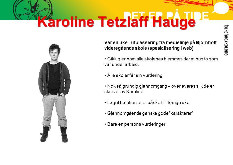 Karoline Tetzlaff Hauge Var en uke i utplassering fra medielinje på Bjørnholt videregående skole (spesialisering i web) • Gikk gjennom alle skolenes hjemmesider minus to som var under arbeid.