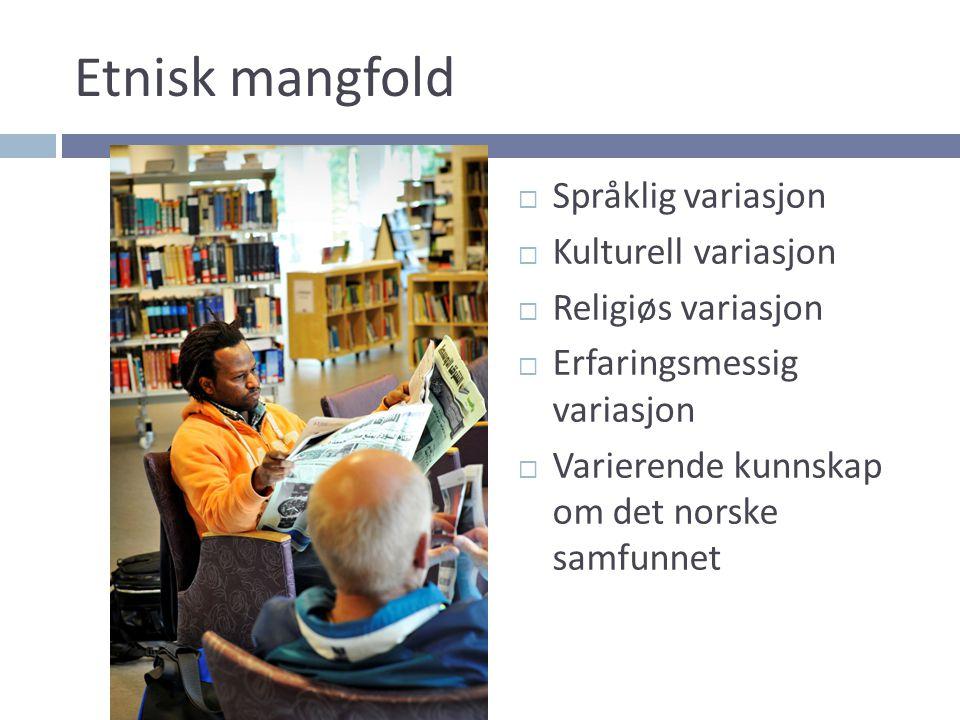 Etnisk mangfold  Språklig variasjon  Kulturell variasjon  Religiøs variasjon  Erfaringsmessig variasjon  Varierende kunnskap om det norske samfun
