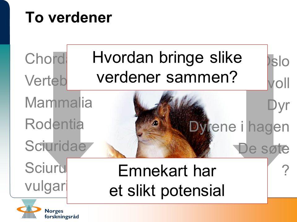 Chordata Vertebrata Mammalia Rodentia Sciuridae Sciurus vulgaris To verdener Oslo Korsvoll Dyr Dyrene i hagen De søte .