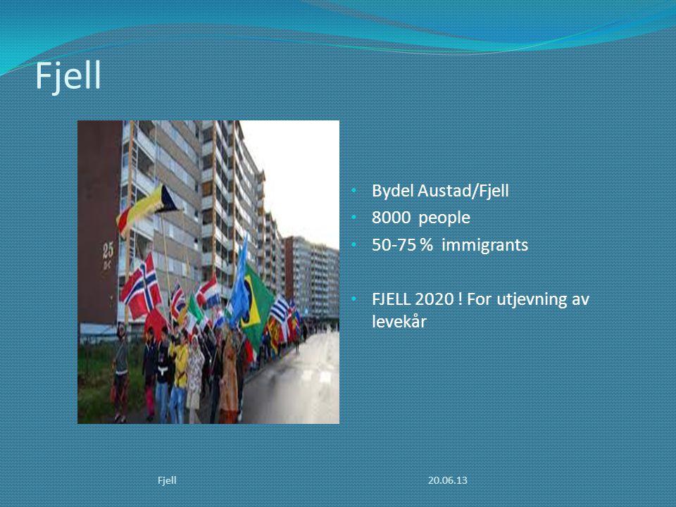 Fjell • Bydel Austad/Fjell • 8000 people • 50-75 % immigrants • FJELL 2020 ! For utjevning av levekår 20.06.13Fjell