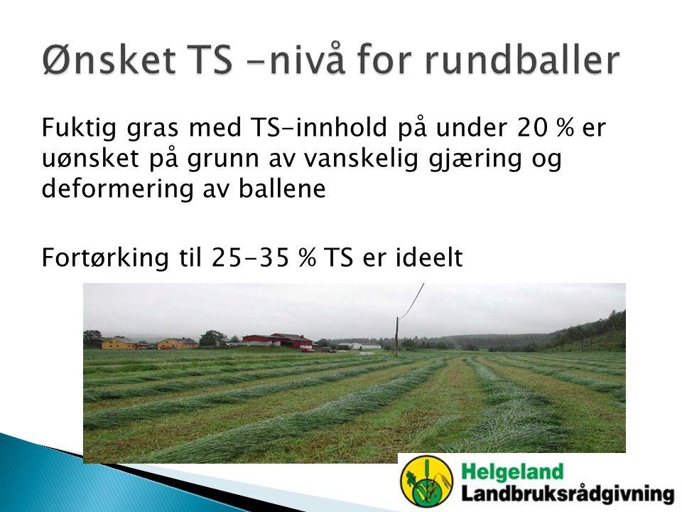 Fuktig gras med TS-innhold på under 20 % er uønsket på grunn av vanskelig gjæring og deformering av ballene Fortørking til 25-35 % TS er ideelt