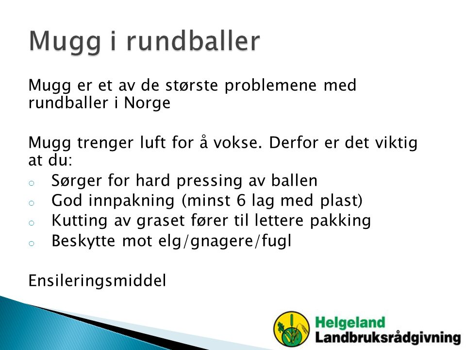 Mugg er et av de største problemene med rundballer i Norge Mugg trenger luft for å vokse. Derfor er det viktig at du: o Sørger for hard pressing av ba