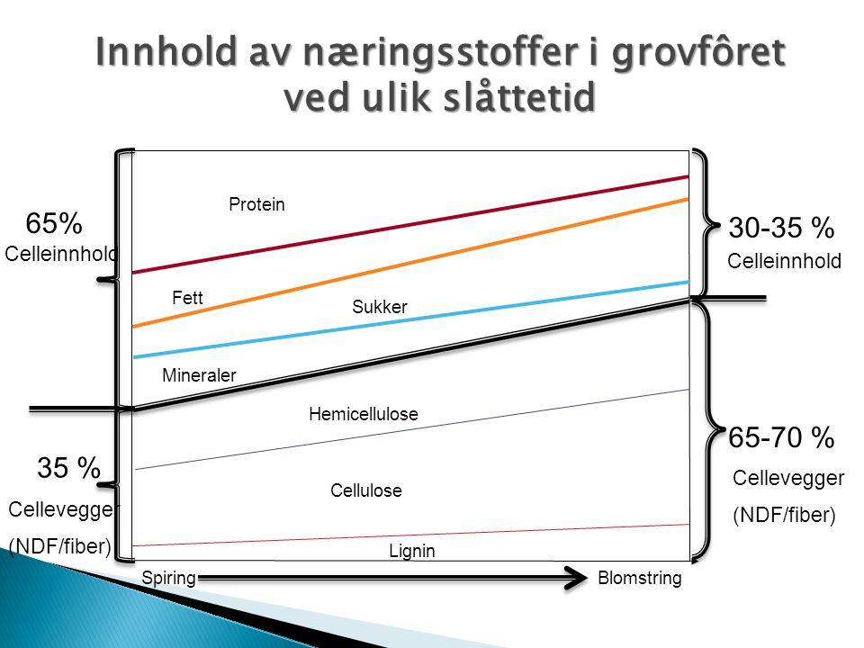 Innhold av næringsstoffer i grovfôret ved ulik slåttetid Lignin Cellulose Hemicellulose Mineraler Sukker Fett Protein 65-70 % 30-35 % 65% 35 % Cellein