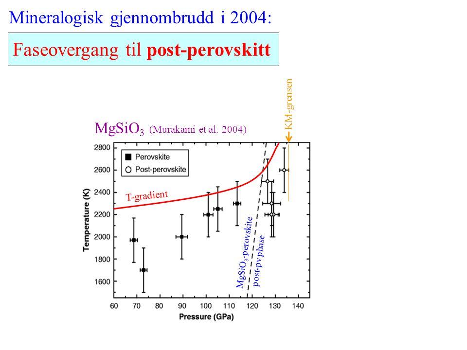 Faseovergang til post-perovskitt MgSiO 3 -perovskite post-pv phase T-gradient Mineralogisk gjennombrudd i 2004: MgSiO 3 (Murakami et al. 2004) KM-gren