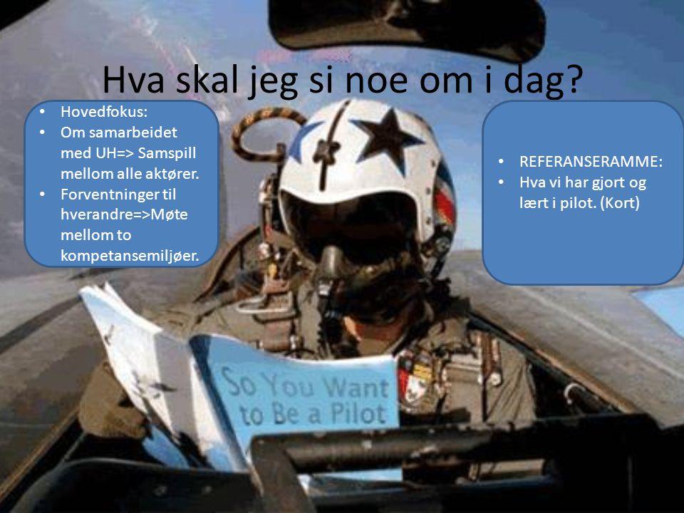 Hva skal jeg si noe om i dag? • REFERANSERAMME: • Hva vi har gjort og lært i pilot. (Kort) • Hovedfokus: • Om samarbeidet med UH=> Samspill mellom all