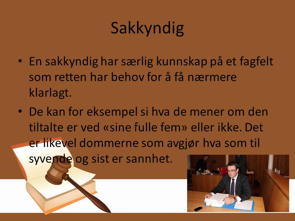 Sakkyndig • En sakkyndig har særlig kunnskap på et fagfelt som retten har behov for å få nærmere klarlagt. • De kan for eksempel si hva de mener om de