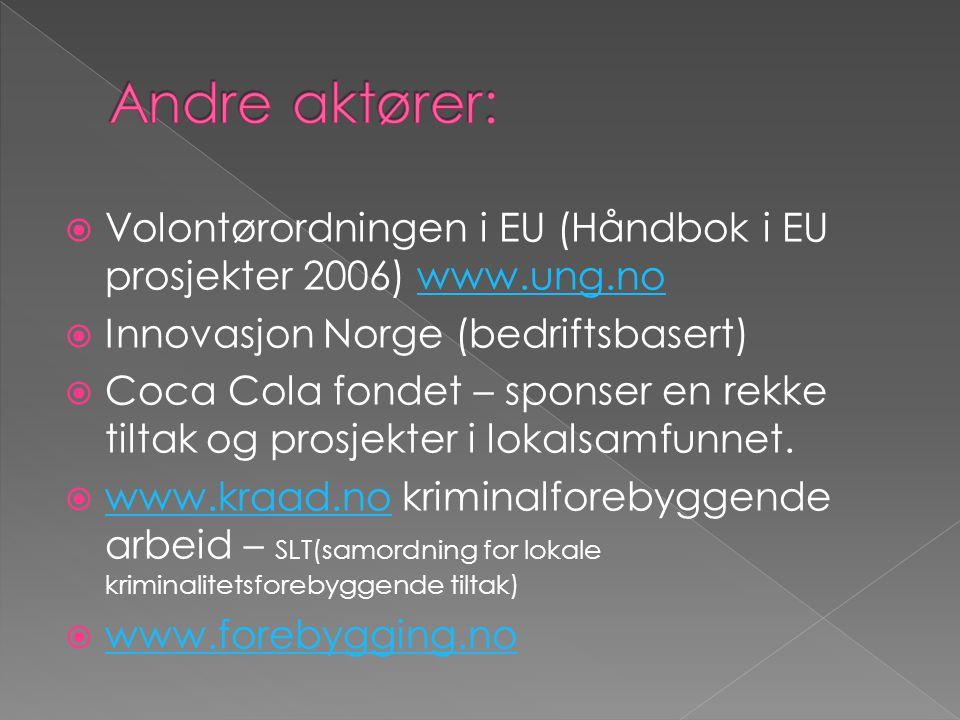  Volontørordningen i EU (Håndbok i EU prosjekter 2006) www.ung.nowww.ung.no  Innovasjon Norge (bedriftsbasert)  Coca Cola fondet – sponser en rekke tiltak og prosjekter i lokalsamfunnet.