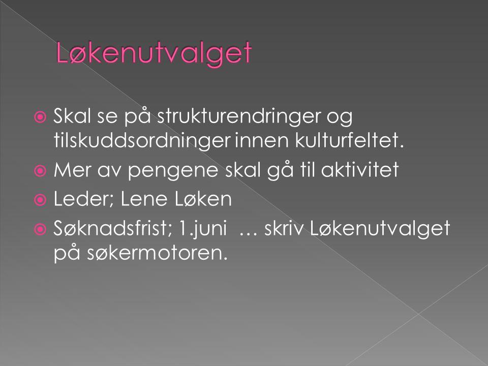 Frivilligheten er på frammarsj • 4,6 millioner innbyggere • 10 millioner medlemskap • 115 000 lag og foreninger med gjennomsnittlig 88 medlemmer • Frivillige innsats tilsvarende 113 500 årsverk hvert år • Aldersgruppa 25 – 49 år er mest aktive (68%) • 64% av norske menn og 51% av norske kvinner deltar