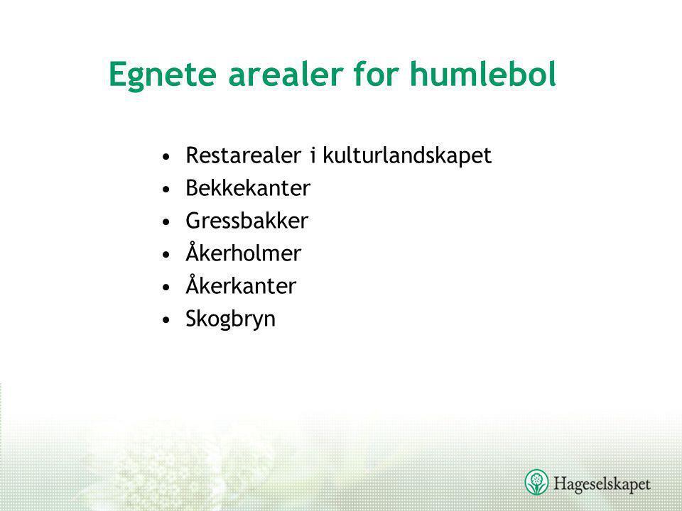 Egnete arealer for humlebol •Restarealer i kulturlandskapet •Bekkekanter •Gressbakker •Åkerholmer •Åkerkanter •Skogbryn