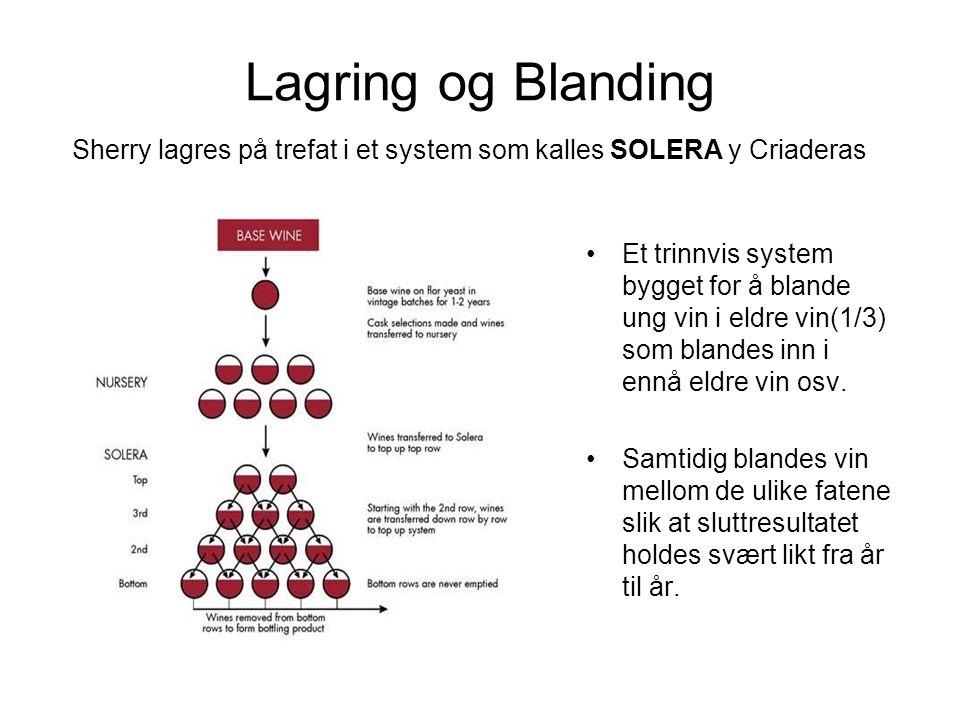 Lagring og Blanding •Et trinnvis system bygget for å blande ung vin i eldre vin(1/3) som blandes inn i ennå eldre vin osv. •Samtidig blandes vin mello