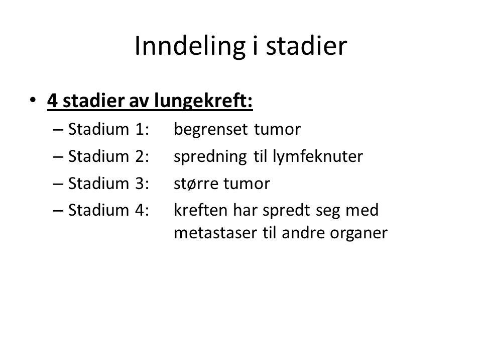 Inndeling i stadier • 4 stadier av lungekreft: – Stadium 1: begrenset tumor – Stadium 2: spredning til lymfeknuter – Stadium 3: større tumor – Stadium