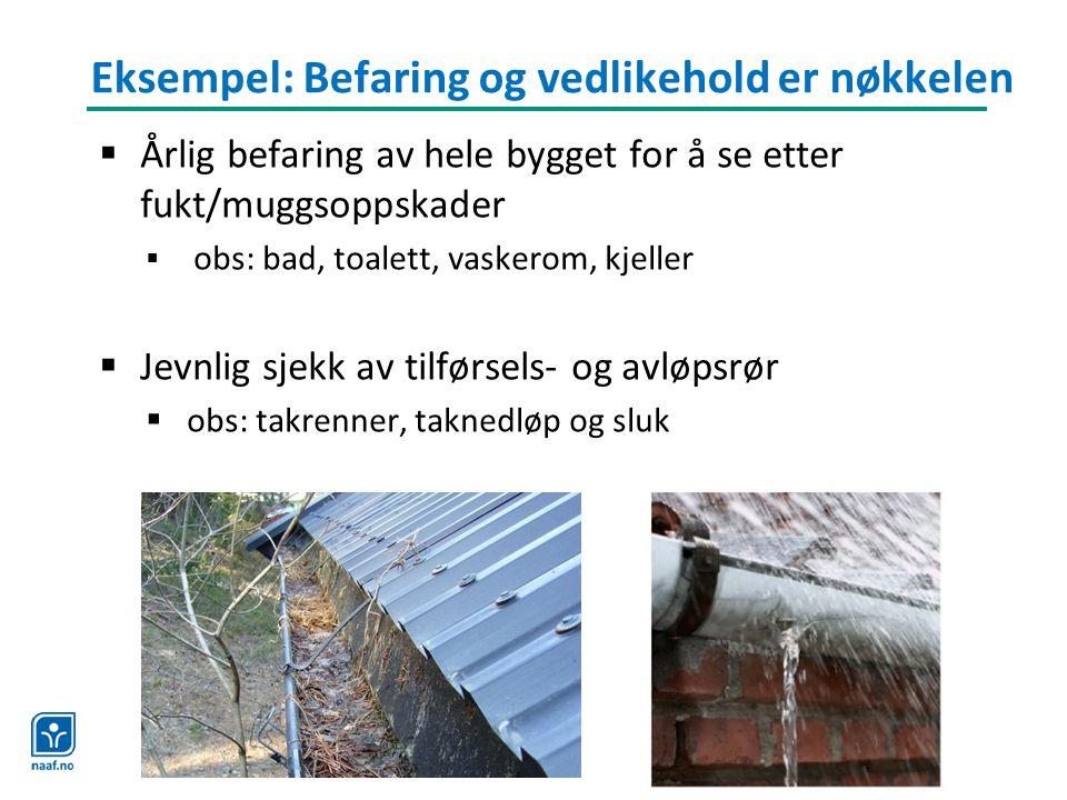Eksempel: Befaring og vedlikehold er nøkkelen  Årlig befaring av hele bygget for å se etter fukt/muggsoppskader  obs: bad, toalett, vaskerom, kjelle