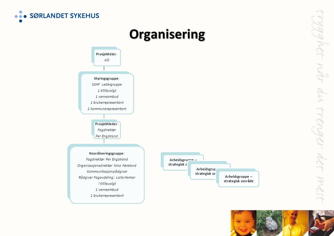 Organisering Prosjekteier: AD Styringsgruppe: SSHF Ledergruppe 1 tillitsvalgt 1 verneombud 1 brukerrepresentant 1 kommunerepresentant Prosjektleder: F