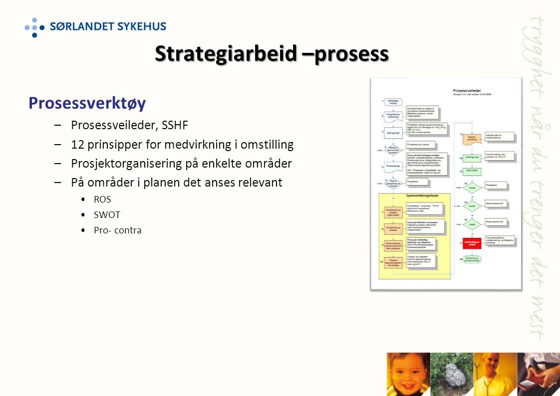 Prosessverktøy –Prosessveileder, SSHF –12 prinsipper for medvirkning i omstilling –Prosjektorganisering på enkelte områder –På områder i planen det an
