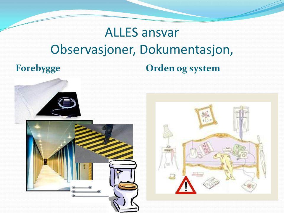 ALLES ansvar Observasjoner, Dokumentasjon, Forebygge Orden og system