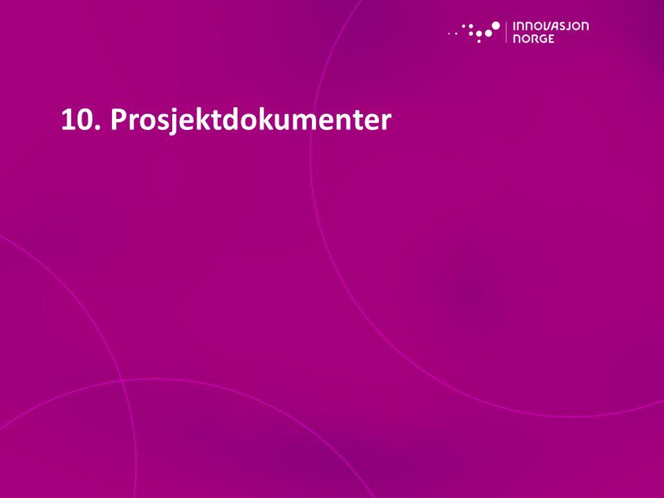 10. Prosjektdokumenter