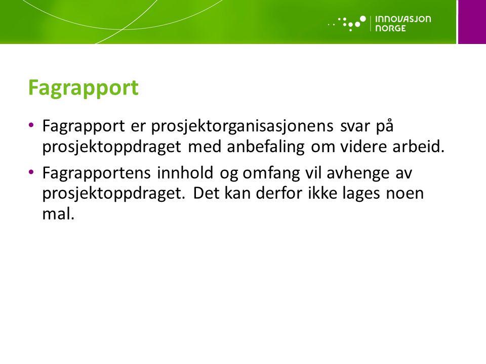 Fagrapport • Fagrapport er prosjektorganisasjonens svar på prosjektoppdraget med anbefaling om videre arbeid.