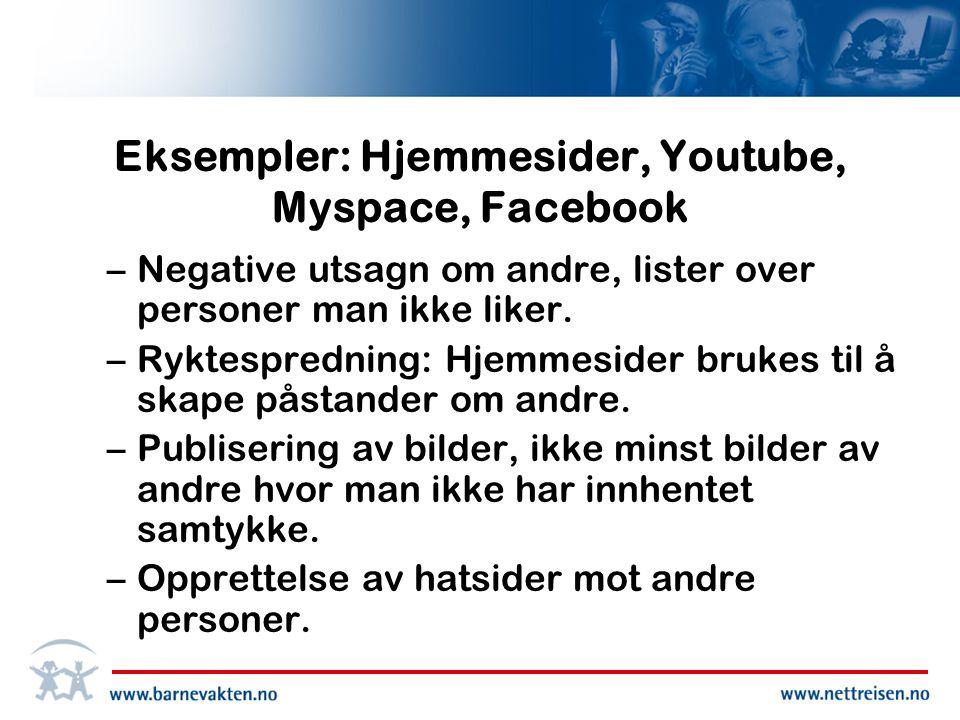 Eksempler: Hjemmesider, Youtube, Myspace, Facebook –Negative utsagn om andre, lister over personer man ikke liker.