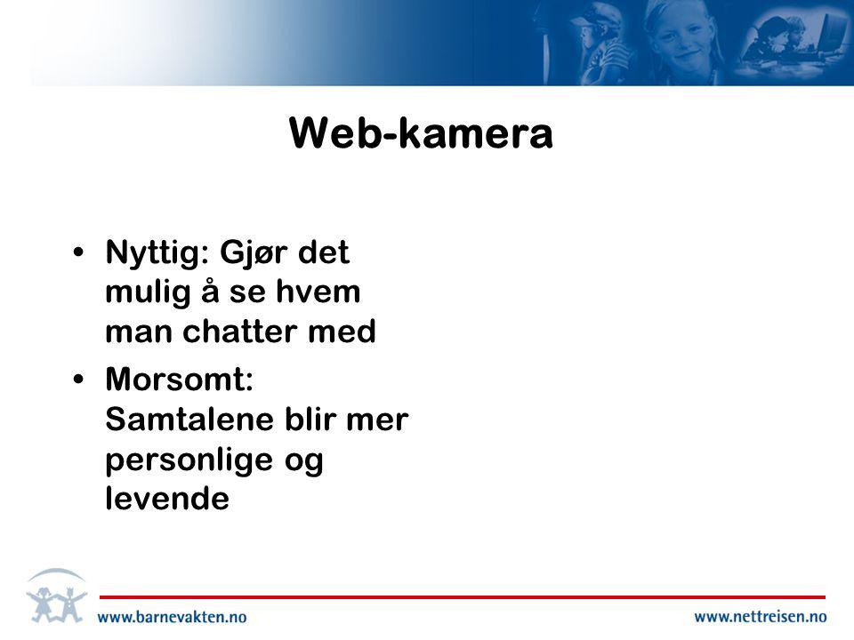 Web-kamera •Nyttig: Gjør det mulig å se hvem man chatter med •Morsomt: Samtalene blir mer personlige og levende