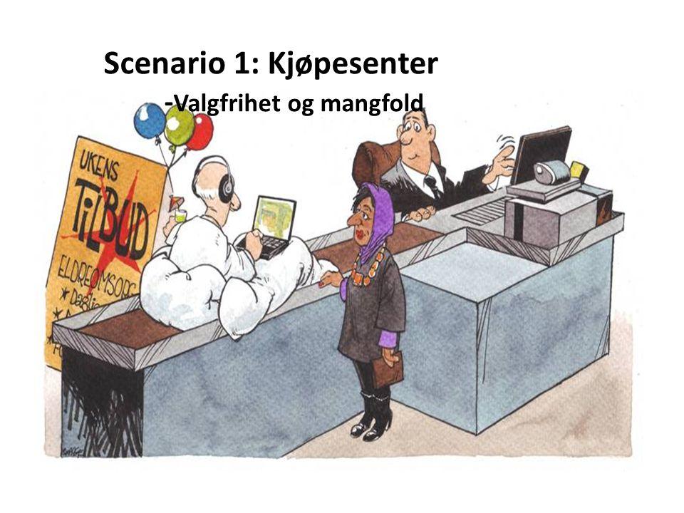 Scenario 1: Kjøpesenter - Valgfrihet og mangfold