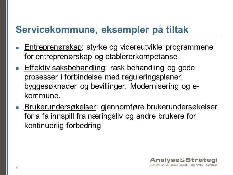 Servicekommune, eksempler på tiltak  Entreprenørskap: styrke og videreutvikle programmene for entreprenørskap og etablererkompetanse  Effektiv saksb