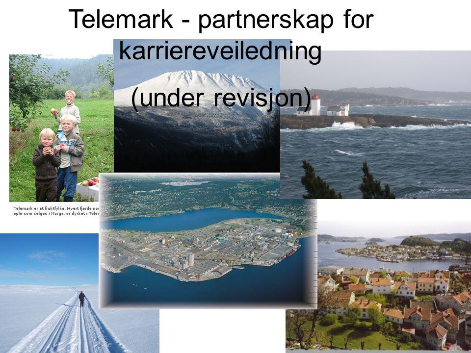 Telemark - partnerskap for karriereveiledning (under revisjon)