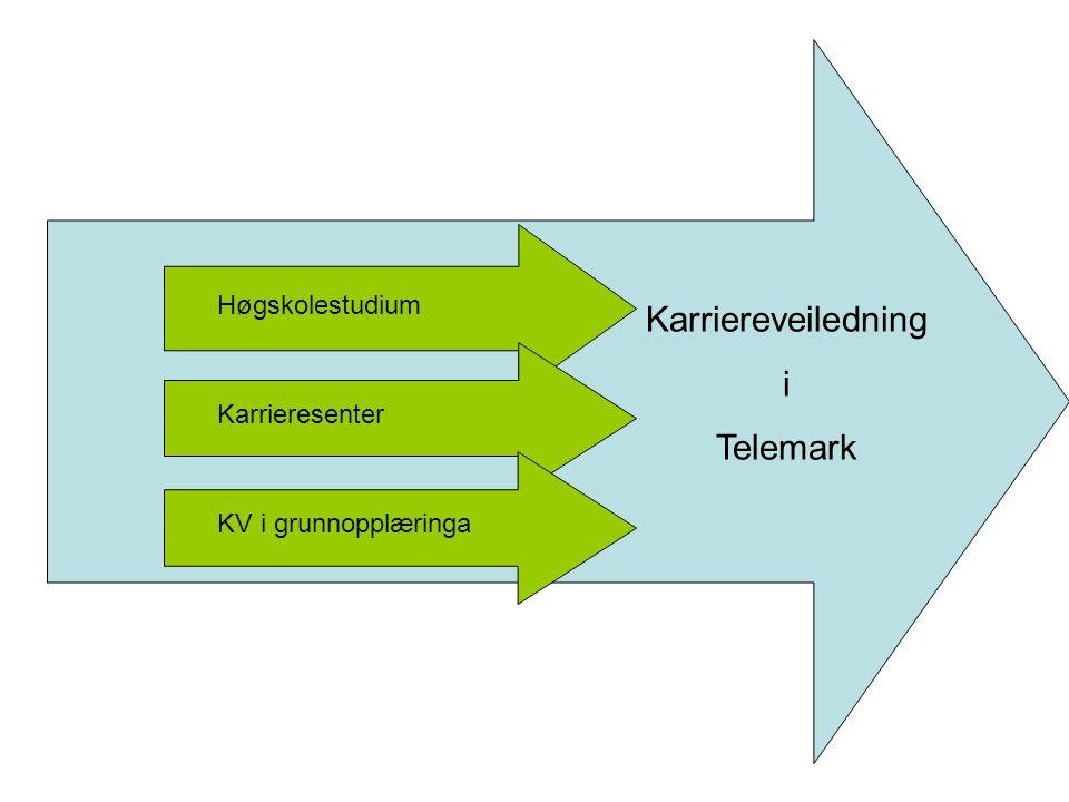 Høgskolestudium Karrieresenter KV i grunnopplæringa Karriereveiledning i Telemark