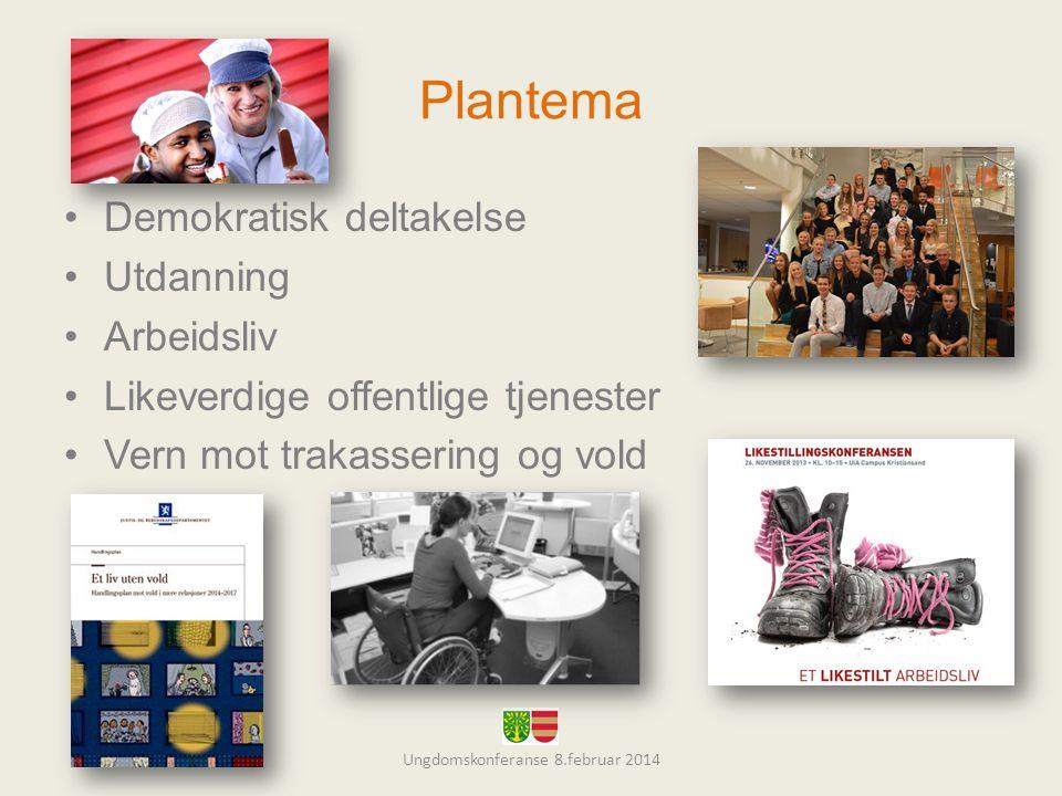 Plantema •Demokratisk deltakelse •Utdanning •Arbeidsliv •Likeverdige offentlige tjenester •Vern mot trakassering og vold Ungdomskonferanse 8.februar 2014