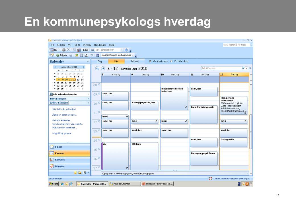 En kommunepsykologs hverdag 11