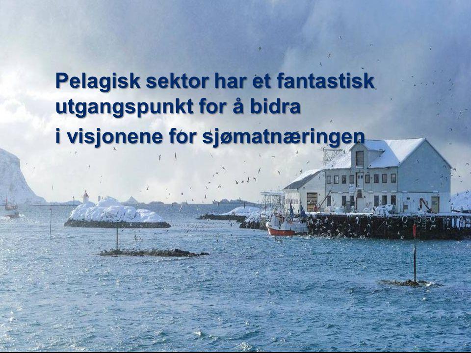 Pelagisk sektor har et fantastisk utgangspunkt for å bidra i visjonene for sjømatnæringen