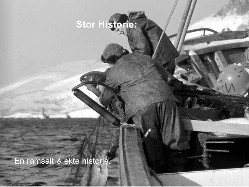 I 2012 omsatte Norges Sildesalgslag pelagisk fisk til en samlet verdi på 7 mrd NOK Store verdier: