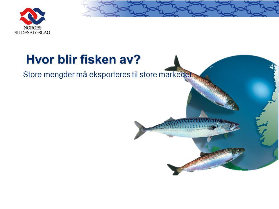 Eksportmarked for pelagisk fisk 1.Japan 2.Russia 3.China 4.Germany 5.Ukraine 6.Netherlands 7.Poland 8.Lithuania 9.Turkey 10.Nigeria