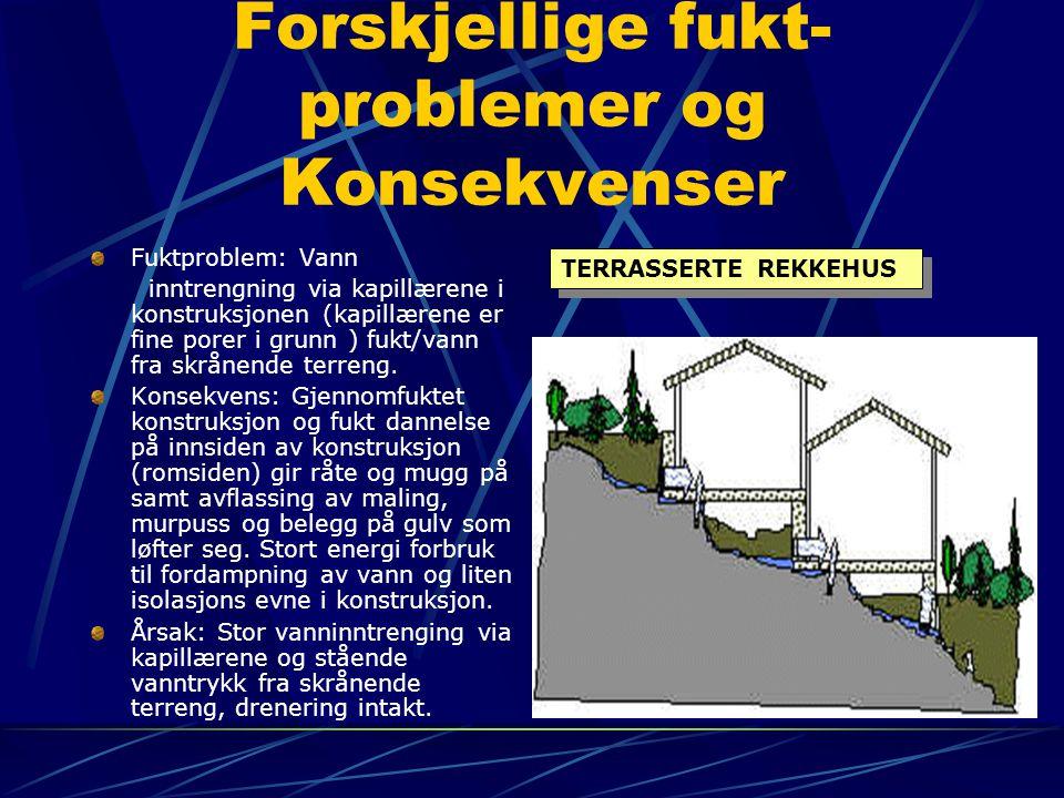 Forskjellige fukt- problemer og Konsekvenser Fuktproblem: Vann inntrengning via kapillærene i konstruksjonen (kapillærene er fine porer i grunn ) fukt