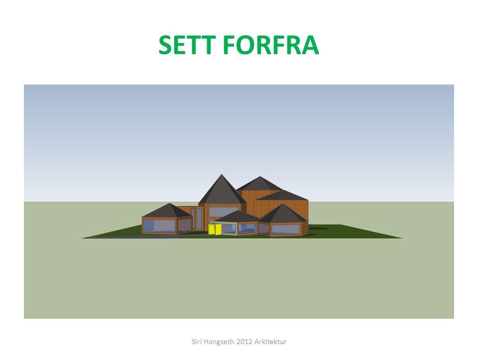 SETT BAKFRA Siri Hongseth 2012 Arkitektur