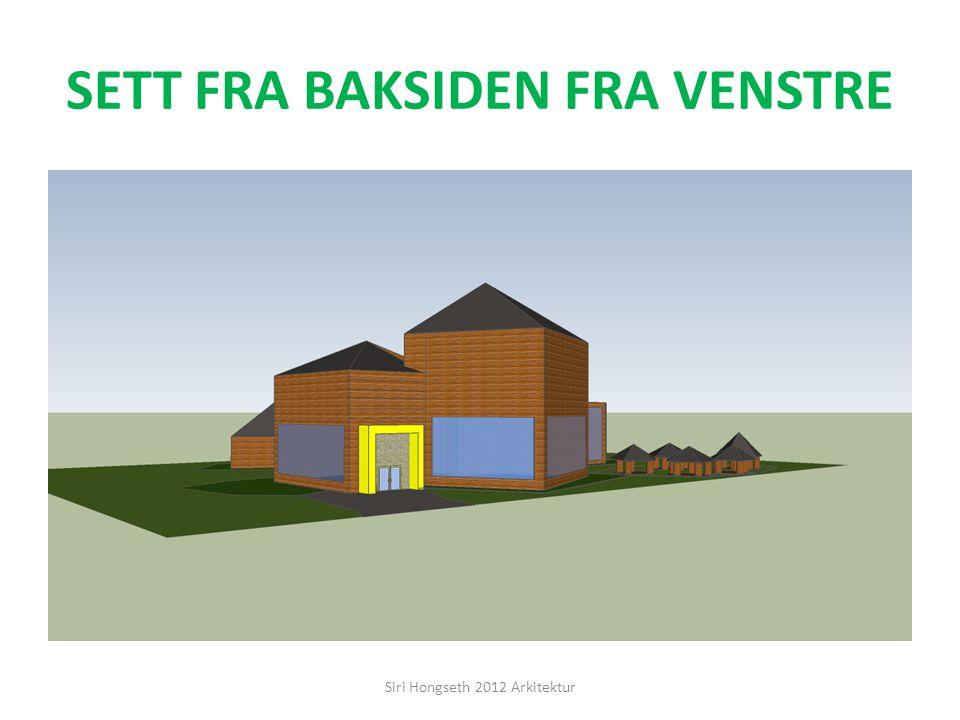 HØYRE SIDE Siri Hongseth 2012 Arkitektur