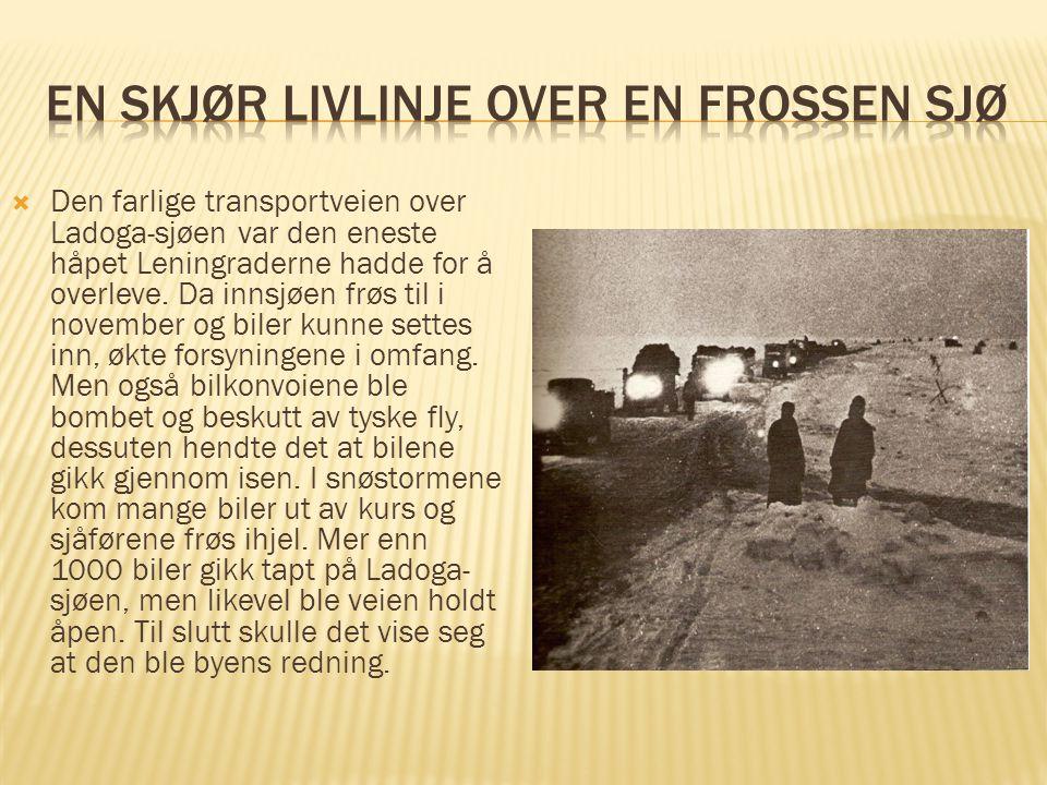  Den farlige transportveien over Ladoga-sjøen var den eneste håpet Leningraderne hadde for å overleve. Da innsjøen frøs til i november og biler kunne