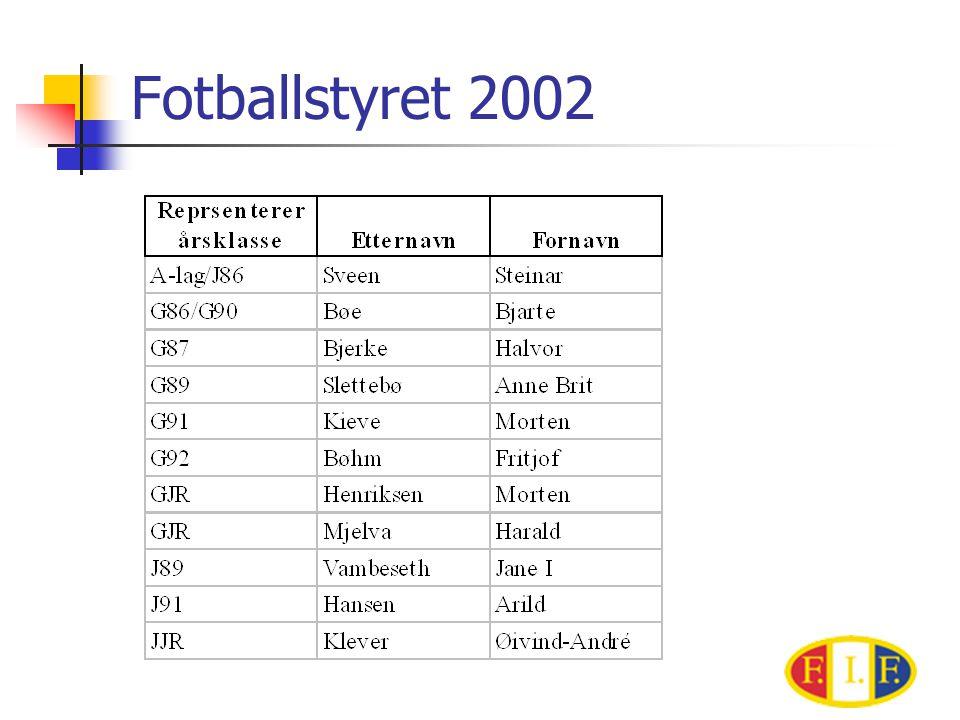 Fotballstyret 2002